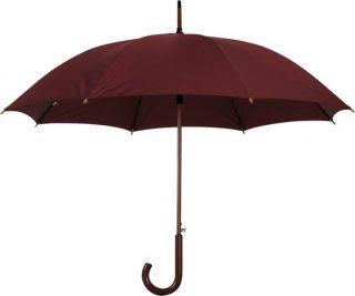 מטרייה קטנה מרי